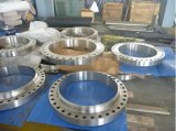 <strong>Inconel 800H Forging Flanges</strong>