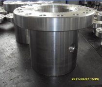 Forged Casing Heads